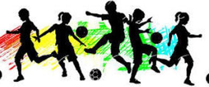 U Gacku registrovano 11 sportskih klubova