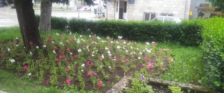 Cvijeće i zelenilo za ljepši izgled Gacka