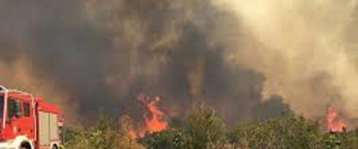 Požar između Stepena i Korita