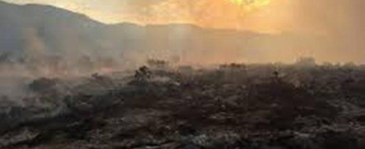 Požar ugašen u Kamenom brdu