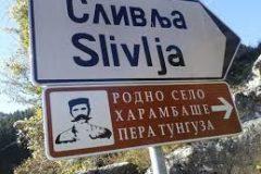 """""""Točak 2017"""" u Slivljima"""